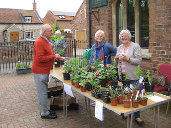 photograph of Women's Institute members and plant stall